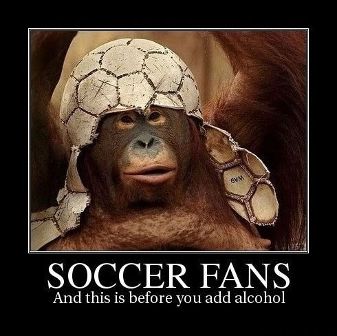 ape sports dedication soccer funny - 7749370368