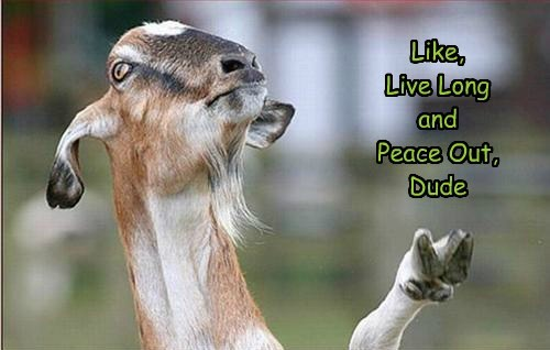 goat live long and prosper funny - 7749403904