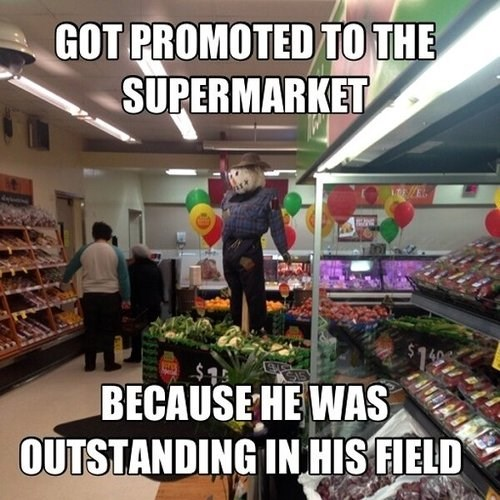 scarecrows supermarkets