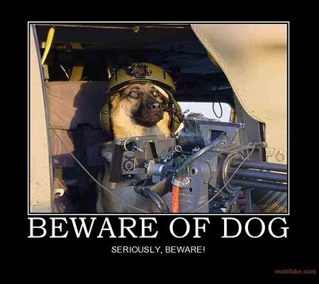 guns beware dogs funny - 7749529856