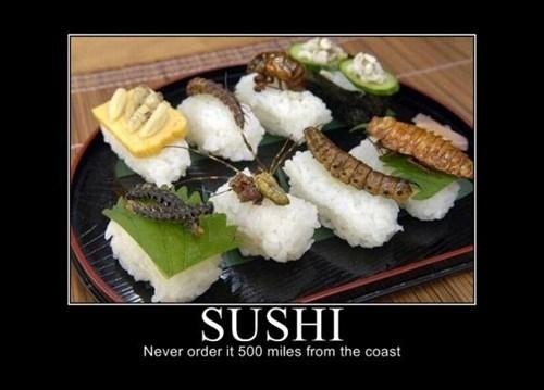 bugs sushi,food,funny
