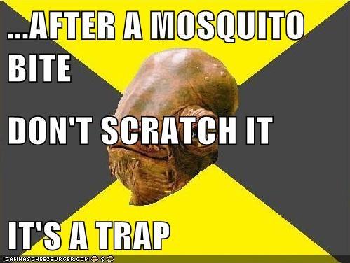 After A Mosquito Bite Don T Scratch It It S A Trap Memebase
