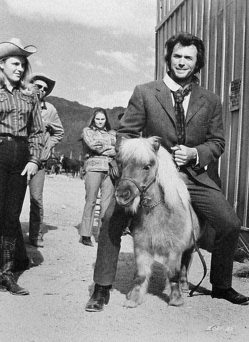 wtf Clint Eastwood horses funny - 7749588480
