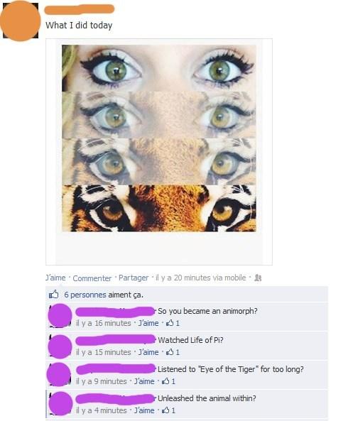 life of pi survivor eye of the tiger animorphs - 7750425088