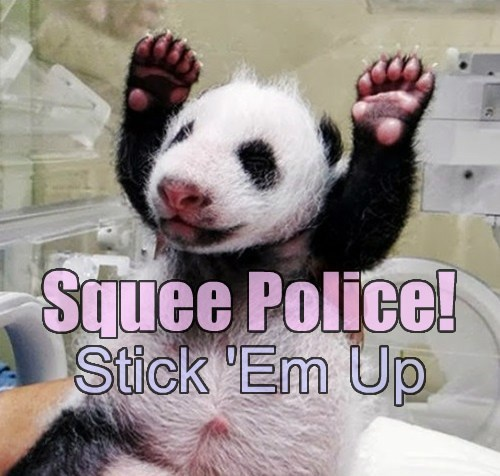 panda,squee,funny,police