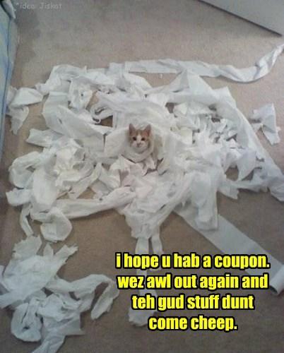i hope u hab a coupon. wez awl out again and teh gud stuff dunt come cheep. *idea: Jiskat