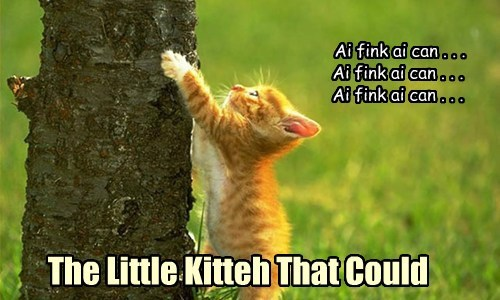 climbing kitten cute the little engine that could - 7753197568