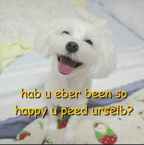 cute peeing happy - 7753740800