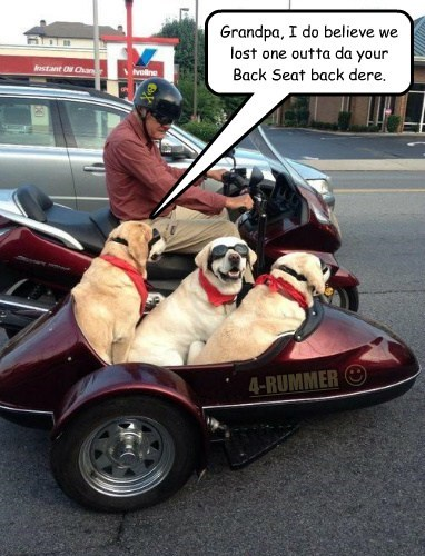 Grandpa, I do believe we lost one outta da your Back Seat back dere. N 4-RUMMER J