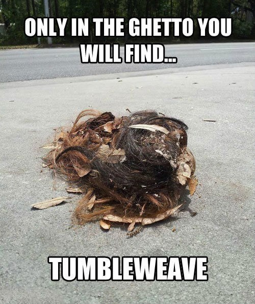 tumbleweave,ghetto,weave,poorly dressed,g rated