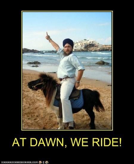 ride,dawn,funny,horse