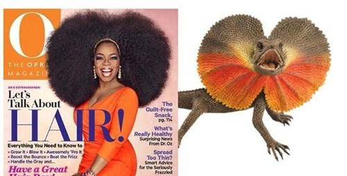 nature,oprah,imitation