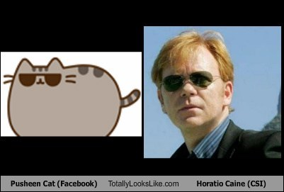 Pusheen Cat (Facebook) Totally Looks Like Horatio Caine (CSI)