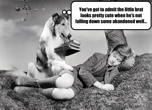 well,lassie,funny