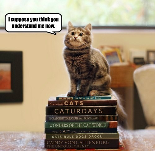 books,Cats