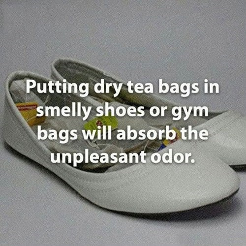 shoes,hacks,smelly,tea bags