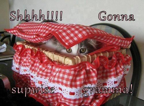 Cheezburger Image 7756862976