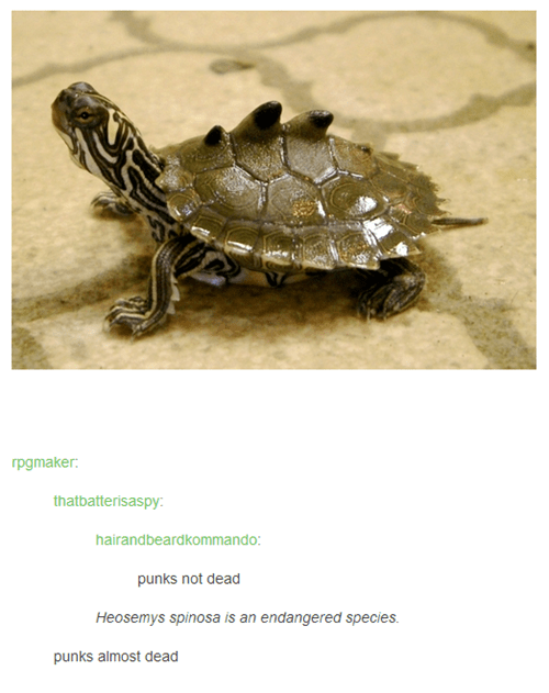 punk punk rock turtles - 7757007872