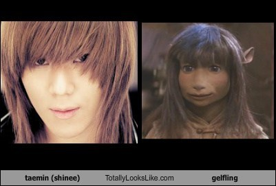 taemin (shinee) Totally Looks Like gelfling