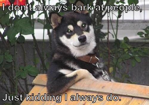 just kidding bark - 7760869632