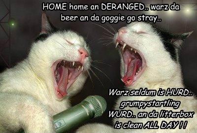 HOME home an DERANGED.. warz da beer an da goggie go stray.. Warz seldum is HURD.. grumpystartling WURD.. an da litterbox is clean ALL DAY ! !