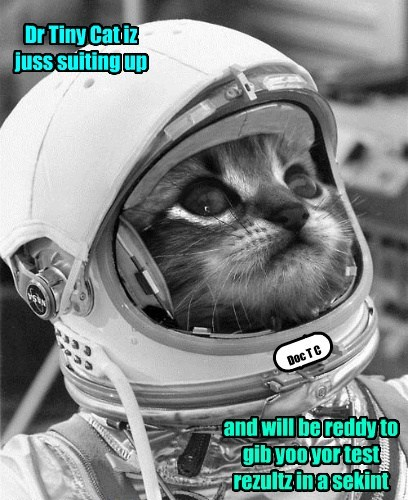 Dr Tiny Cat iz juss suiting up and will be reddy to gib yoo yor test rezultz in a sekint Doc T C
