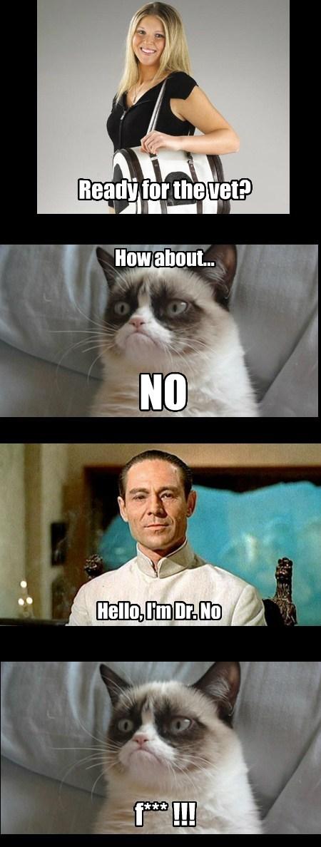 Grumpy Cat dr-no vet funny - 7763256576