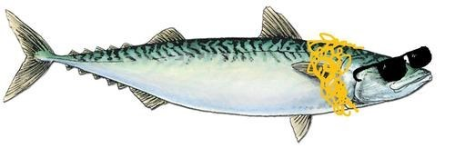mackerel Macklemore MTV VMAs