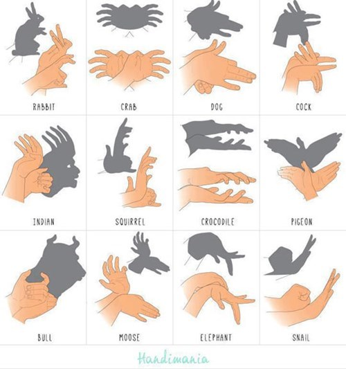 shadow hands animals