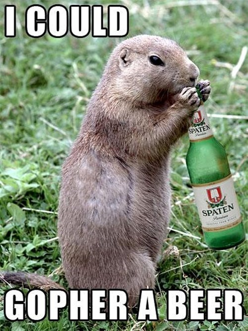 beer,pun,gopher