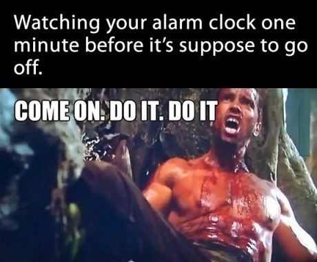 mornings,alarm clock,Predator,Arnold Schwarzenegger,monday thru friday,g rated