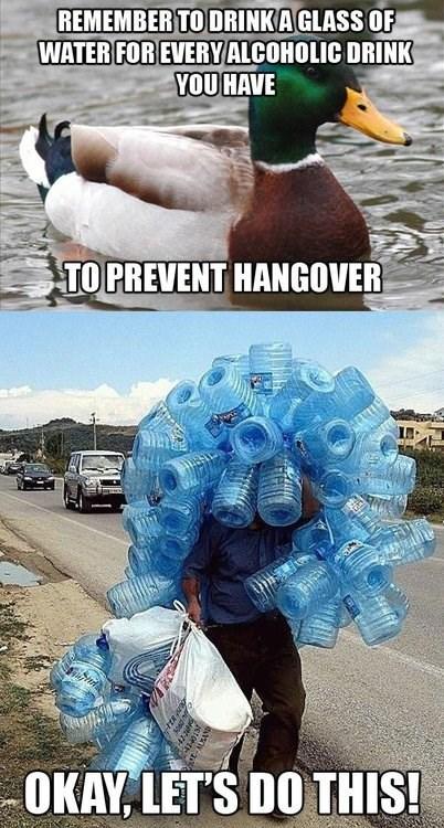 drinking Actual Advice Mallard water - 7763908096