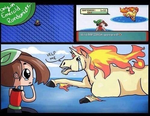 Pokémon randomizer comics rapidash - 7763908352