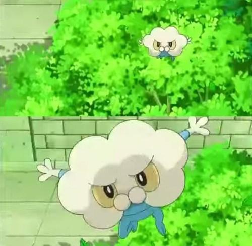 TMNT anime froakie - 7764473600
