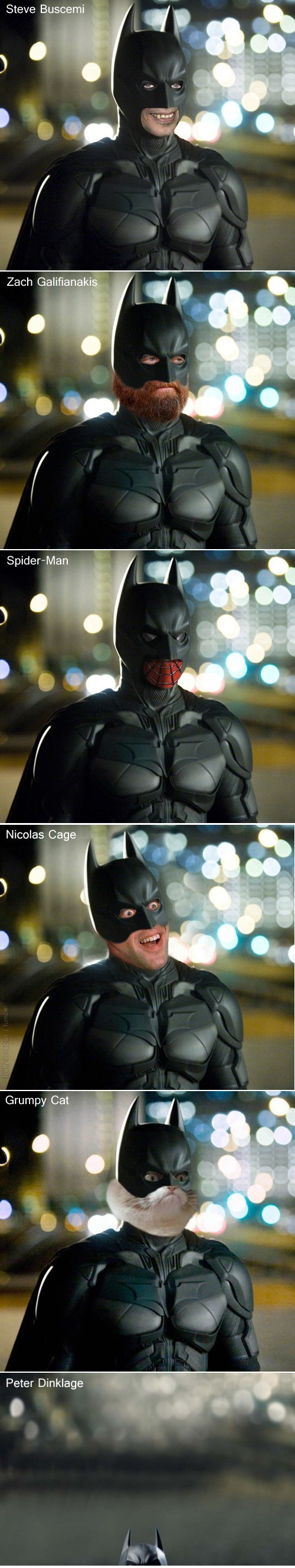 Grumpy Cat batfleck steve buscemi Zach Galifianakis nicolas cage batman peter dinklage - 7764876800