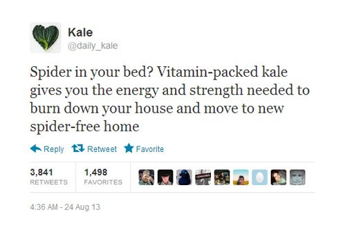 spiders,kale,vegetables,daily kale,failbook,g rated