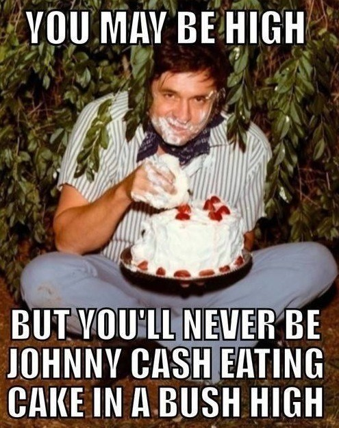 cake,stoned,wtf,high,cake eater,johnny cash,celeb