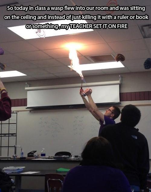 wtf teachers funny - 7767638016