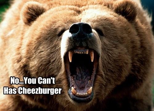 Cheezburger Image 7767725824