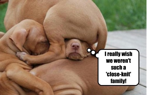 I really wish we weren't such a 'close-knit' family!
