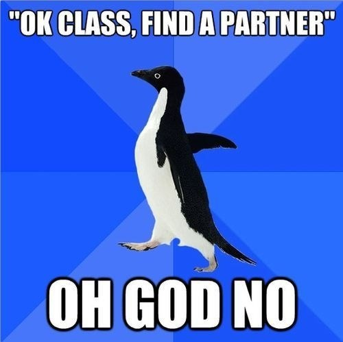 socially awkward penguin school advice animals Memes - 7769340672