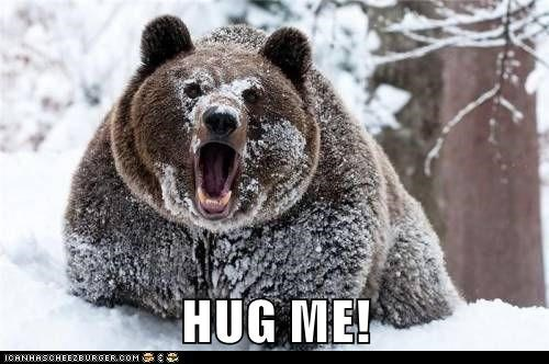 scary,snow,bears,hug