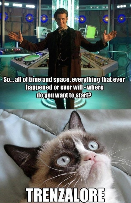 Grumpy Cat Matt Smith 11th Doctor trenzalore - 7770209280