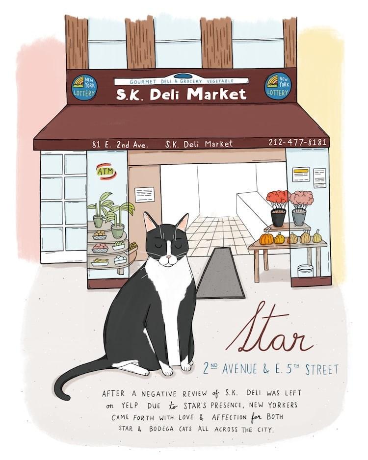 art begoda delies new york Cats - 7770373