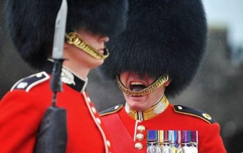 royal guard scream omm nomm - 7770420992