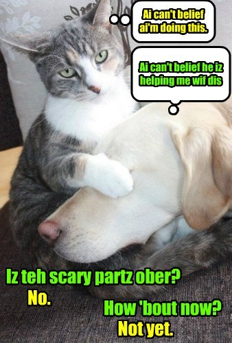 Iz teh scary partz ober? Ai can't belief ai'm doing this. No. How 'bout now? Not yet. Ai can't belief he iz helping me wif dis