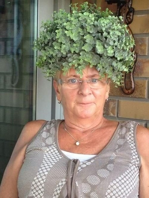 granny,chia pet,gift