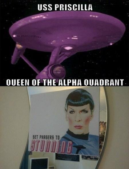 Spock Priscilla Queen of the Desert stunning Star Trek funny - 7771610112