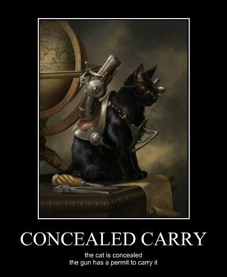 CONCEALED CARRY the cat is concealed the gun has a permit to carry it
