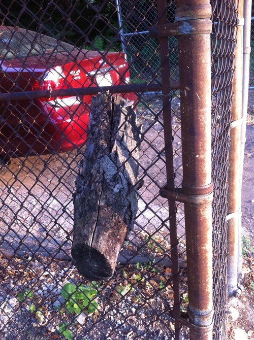 fence log hole funny there I fixed it - 7773713152